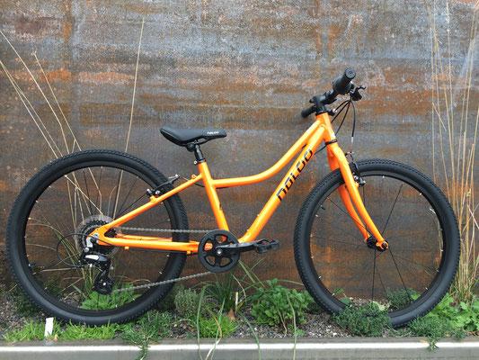 """Chameleon 24"""" orange"""