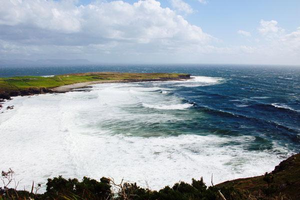wildes Irland