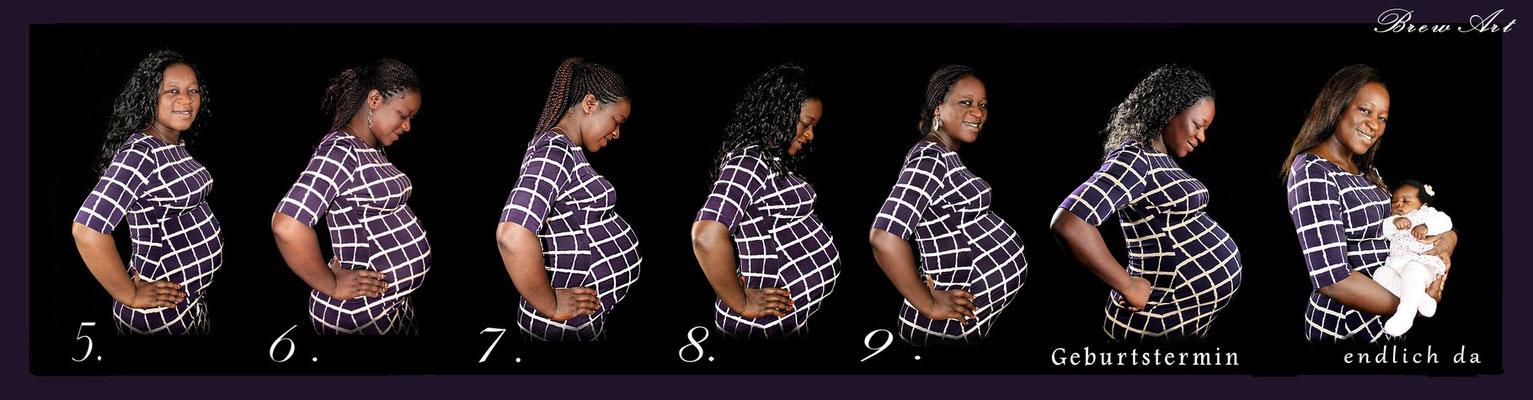 #Babybauchshooting #Babybauch #Marienkäfer #Babybauchfolge