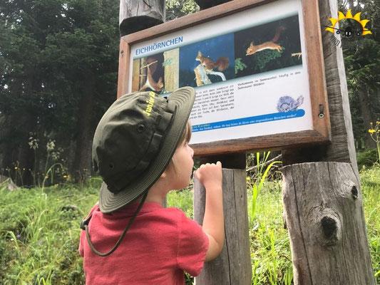 Informationstafel auf dem Wild- und Tierlehrpfad Samnaun.