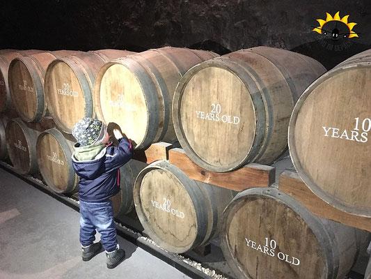 Weinfässer in der Portwein-Kellerei begutachten.