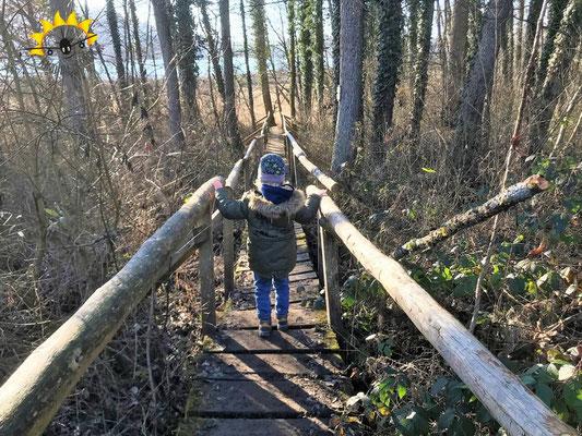 Über Stege, Naturpfade und Schotterwege am Mindelsee spazieren.