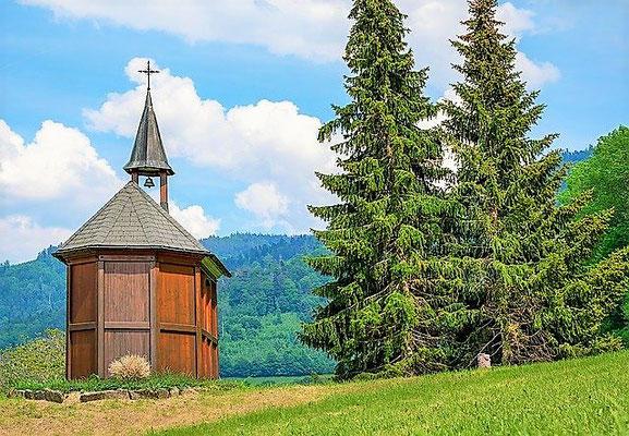Im Schwarzwald mit Fahrrad unterwegs.