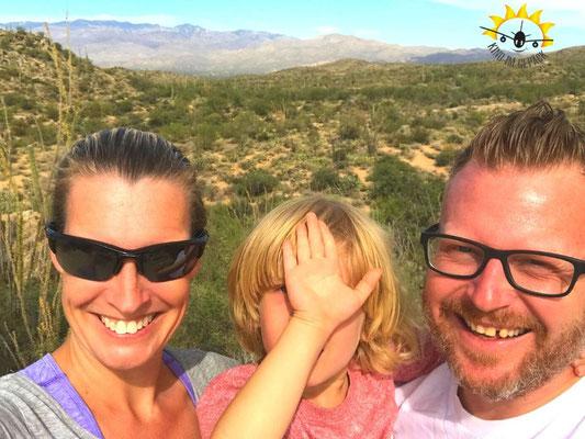 Kakteen soweit das Auge im Saguaro NP reicht.