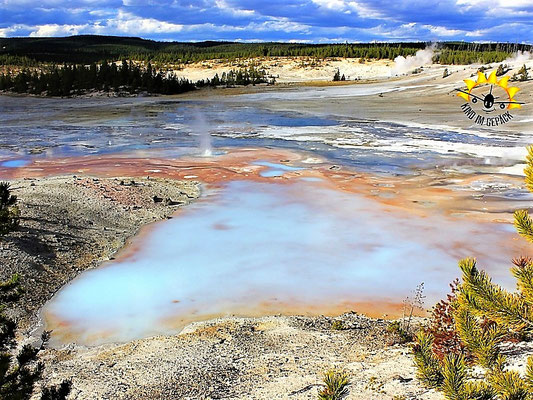 Heiß! Das Norris Geysir Becken im Yellowstone Nationalpark.