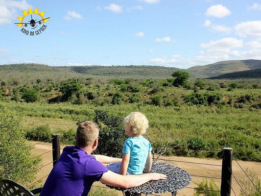 Manchmal sieht man bei einer Safari auch einfach nichts - nur Landschaft.