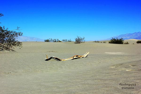 Die Mesquite Sand Dunes