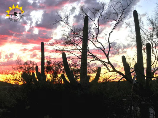 Sonnenuntergang im Sabino Canyon.