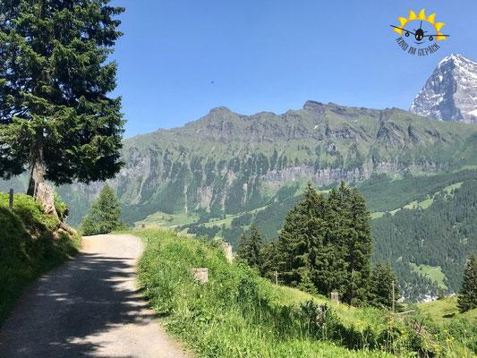 Wanderweg von Winteregg zur Grütschalp.