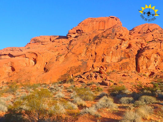 Rote Sandstein-Formation im Valley of Fire bei Las Vegas.