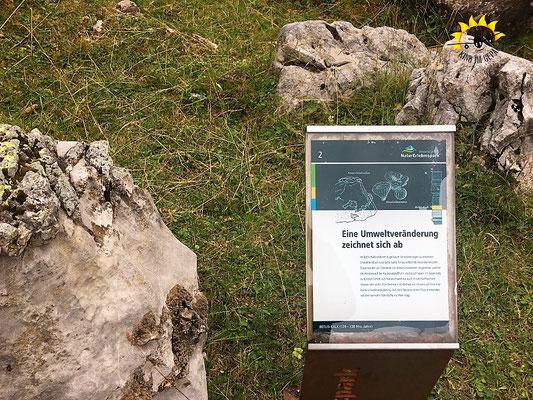 Lehrtafel im Geologie-Steinpark.
