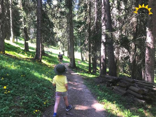 Durch den Inner Wald von Ravaisch nach Samnaun.