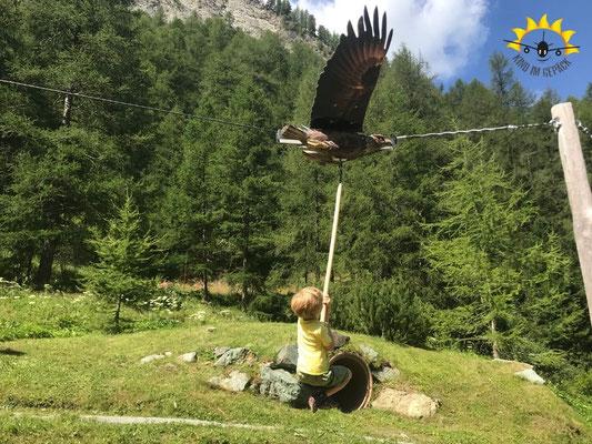 Adlerflug auf dem Samnauner Märchenweg.