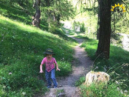 Richtung Samnaun von Ravaisch durch den Wald.