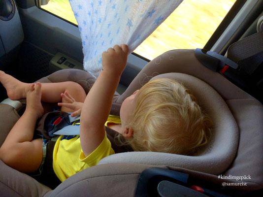Auf dem Beifahrersitz hat man die beste Aussicht.