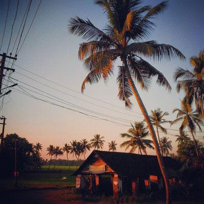日没前のお散歩。インドのスタンダード・スタイル。