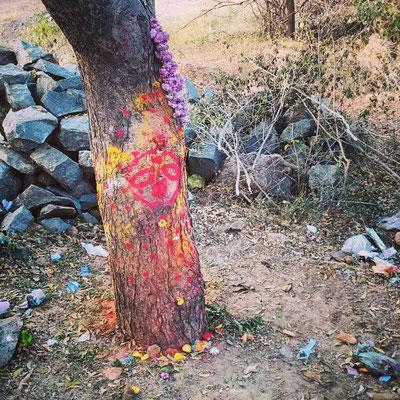 女神を祀る木。ちょっと呪術的な香り。