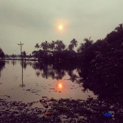 ケーララはウォーター・ランド。雨季明けの水田、見渡す限り水。