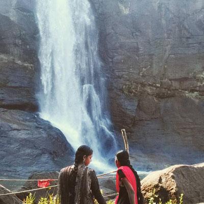 ケーララ州、Athirappilly の滝。インド映画のロケ地にもよく使われているそう。