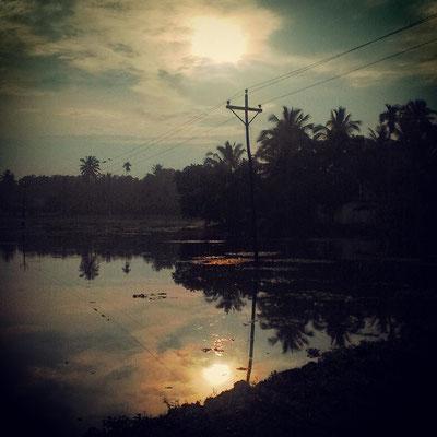 雨季明けの水田、雲の隙間からのぞく太陽。