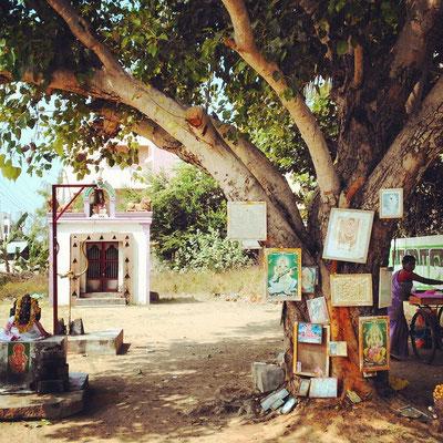 ティルバンナーマライ、木に祀られた沢山の神様。原インド的風景。