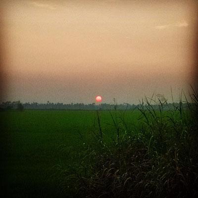 緑の大地に沈む、オレンジ色の太陽。ケーララの夕暮れはルソーの絵のように幻想的。