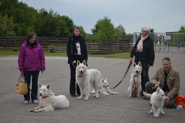 Karin mit Cassie, Anna mit Rigaz, Silke mit Mihaly, HaJü mit Karl, vor Silke - Ashanti