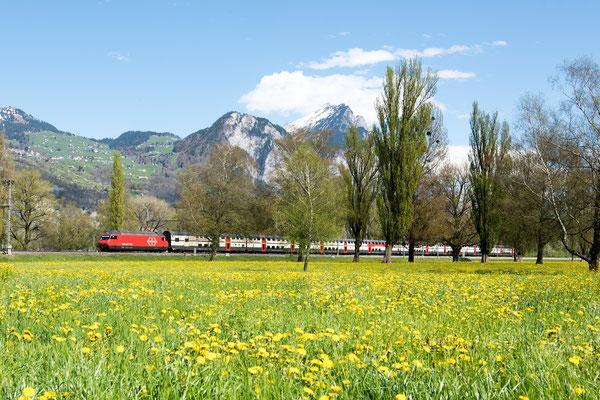 Alpenlandschaft mit SBB Zug