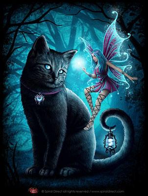 Illustration für spiral - cat and fairy © spiral direct all rights reserved / www.spiraldirect.com