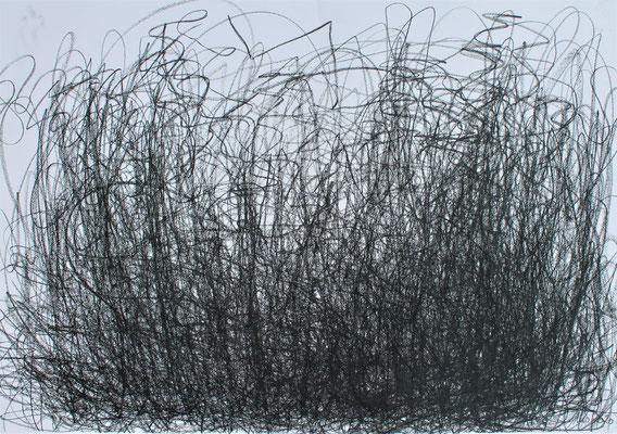 Metamorphosis 1- Acryl Mischtechnik auf Papier 70x100 cm Preis auf Anfrage