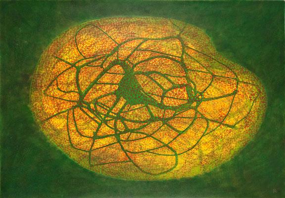 Zellkörper 04, 2011, Tusche, Farbstifte auf Papier, 70x100 cm