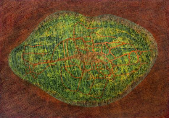 Zellkörper 01, 2011, Tusche, Farbstifte auf Papier, 70x100 cm