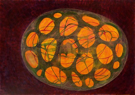 Zellkörper 03, 2011, Tusche, Farbstifte auf Papier, 70x100 cm