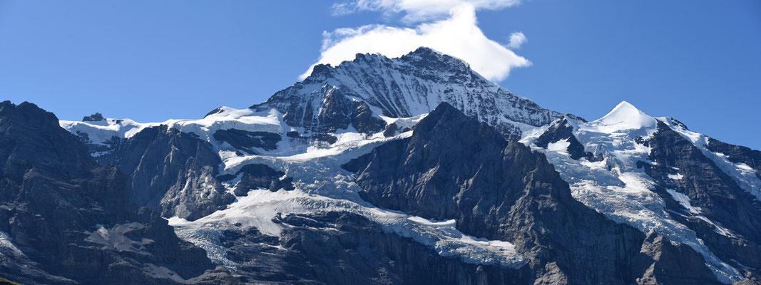 2020, Woche 41, Jungfrau