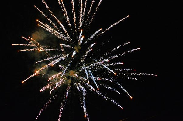 2019, Woche 1, Neujahrsfeuerwerk