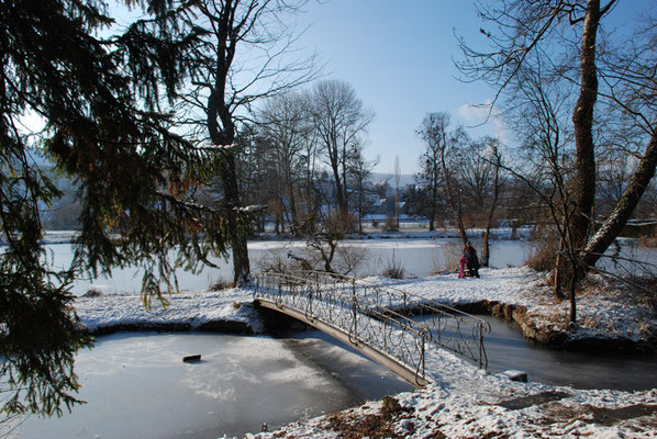 Nr. 269 / 26.12.2010 / Halbinsel Au, Wädenswil, Ausee, Blick Richtung Süden  / 3872 x 2592 / JPG Datei