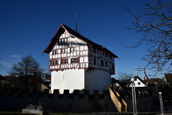 Nr. 304 / 2018 / Zug, Burg /6000 x 4000 / JPG-Datei