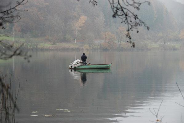 Nr. 241 / 13.11.2011 / Türlersee, Blick Richtung Nord / 3872 x 2592 / JPG Datei