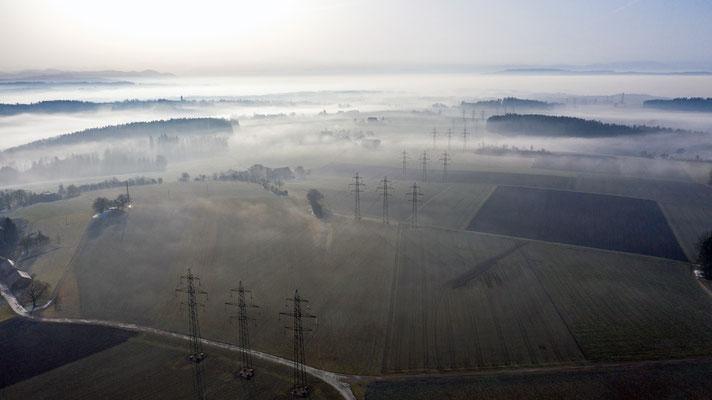 2020 Woche 5, Sonnenbühl, Blickrichtung Alpen, Drohnenaufnahme