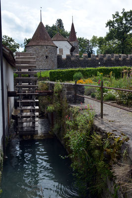 Nr. 2576 / 09.08.2014 / Schloss Hallwyl, Seengen / 6000 x 4000 / JPG-Datei
