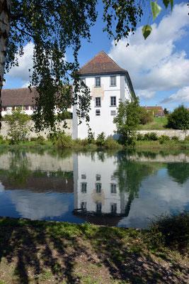 Nr. 3012 / 17.08.2014 / Kloster Rheinau / 6000 x 4000 / JPG-Datei
