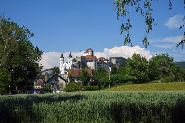 Nr. 5124 / Woche 24 / Aarburg, Schloss Aarburg
