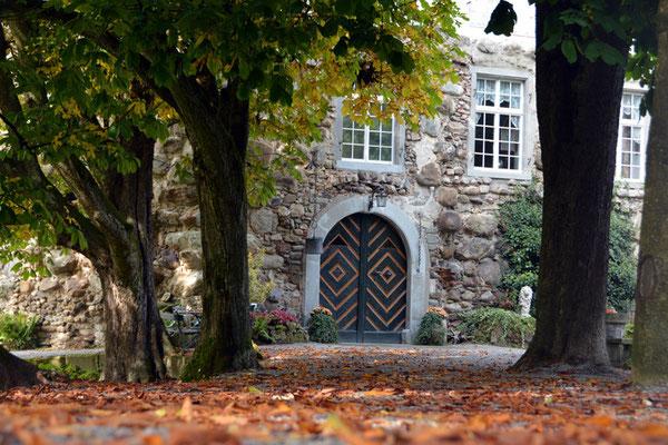 Nr. 2609 / 05.10.2014 / Schloss Wellenberg, Felben Wellhausen / 6000 x 4000 / JPG-Datei