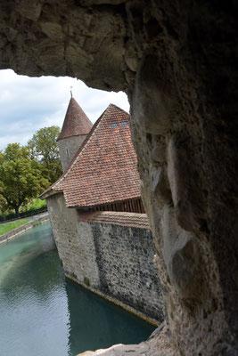 Nr. 2571 / 09.08.2014 / Schloss Hallwyl, Seengen / 6000 x 4000 / JPG-Datei