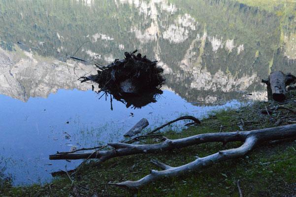 Nr. 212 / 08.09.12 / Klöntalersee, Spiegelung, Blick Richtung Nord-Ost / 6016 x 4000 / JPG-Datei