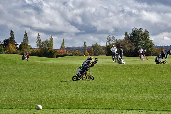 5241 / Woche 41 / Golfplatz bei Lindau