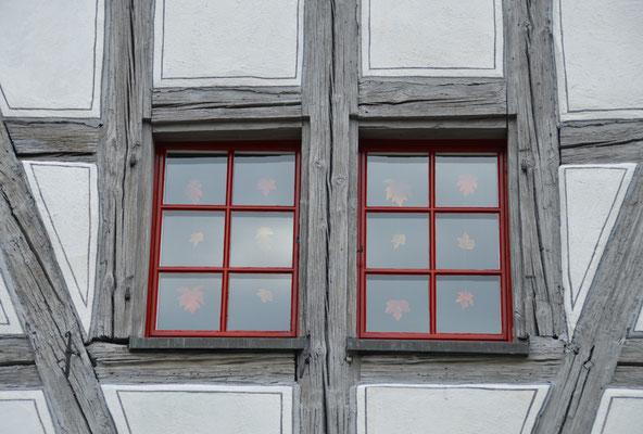 5345 / Wochenbild, Fenster aufgenommen bei Warth-Weiningen