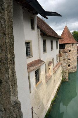 Nr. 2569 / 09.08.2014 / Schloss Hallwyl, Seengen / 6000 x 4000 / JPG-Datei