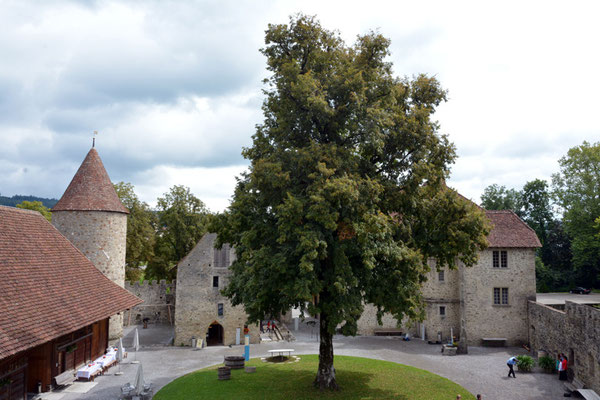 Nr. 2570 / 09.08.2014 / Schloss Hallwyl, Seengen / 6000 x 4000 / JPG-Datei