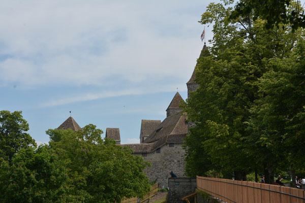 Nr. 2585 / 25.05.2014 / Schloss Rapperswil / 6000 x 4000 / JPG-Datei